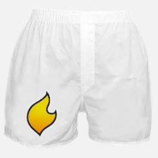 The Flare's Costume Logo! (on Boxer Shorts