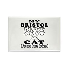 Bristol Cat Designs Rectangle Magnet