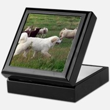 Great Pyr on Duty<br>Keepsake Box