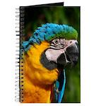 Journal - Macaw