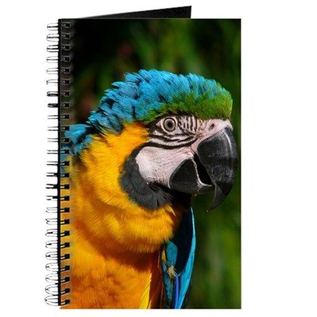 Journal - Macaw