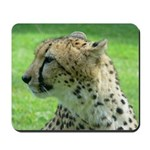 Mousepad - Cheetah