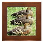 Three Ducks framed tile