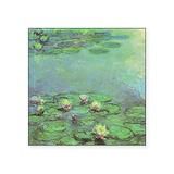 Monet gardens Square