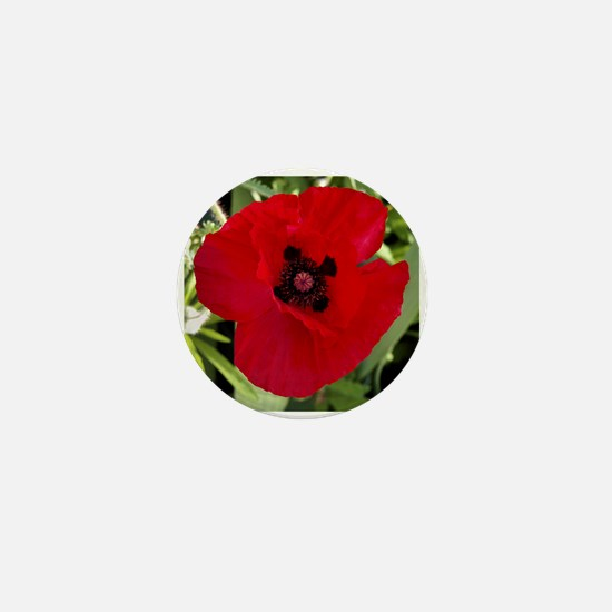 Mini Button (10 pack) Red Poppy # 38