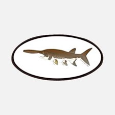 Paddlefish Patches