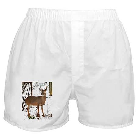 Whitetail Deer In Winter Boxer Shorts