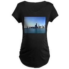 Chicago Skyline Across from Lake Michigan Maternit