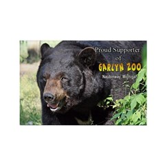 Bear Supporter Magnets