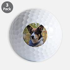 Explorer Golf Ball