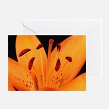 Tiger Lily Up Close And Personal Greeting Card