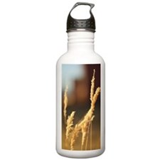 Wheat Grass Water Bottle