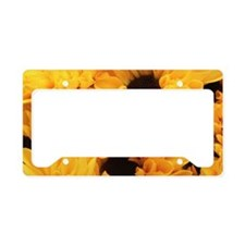 Yellow Poms In Full Bloom License Plate Holder