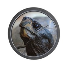 gopher tortoise Wall Clock