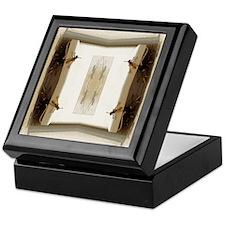 Hornets Shadow Keepsake Box