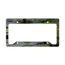 Lily Pad blossom License Plate Holder