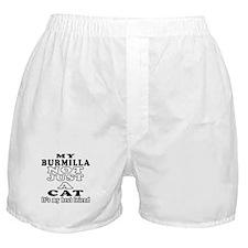 Burmilla Cat Designs Boxer Shorts