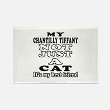 Chantilly Tiffany Cat Designs Rectangle Magnet (10