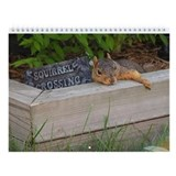 Squirrel Calendars