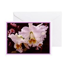 Cool Orchids Greeting Cards (Pk of 10)