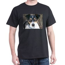 Boo the Rat Terrier T-Shirt