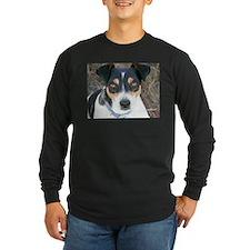 Boo the Rat Terrier T
