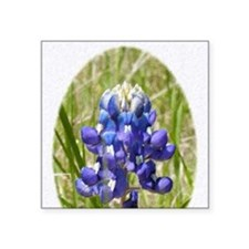 "Bluebonnet Square Sticker 3"" x 3"""