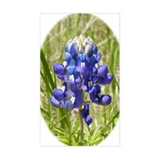 Texas Bluebonnet Decal