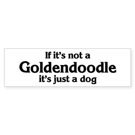 Goldendoodle: If it's not Bumper Sticker