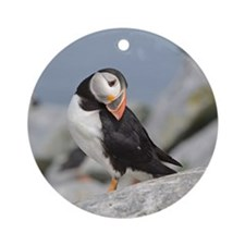 Posing puffin Ornament (Round)