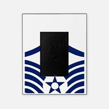USAFMasterSergeantBlueStripes.gif Picture Frame