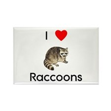 I Love Raccoons Rectangle Magnet (10 pack)