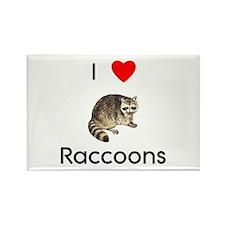 I Love Raccoons Rectangle Magnet