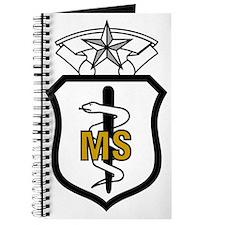 USAFMedicalServiceCorpsCommandLevelX.gif Journal