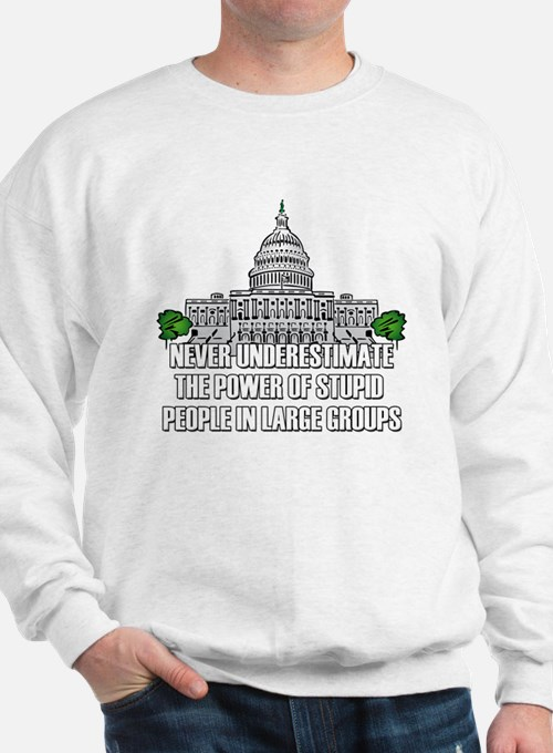 Stupid People In Washington DC Sweatshirt