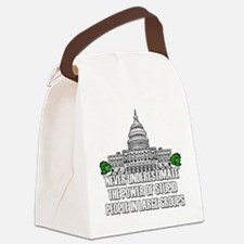 Stupid People In Washington DC Canvas Lunch Bag