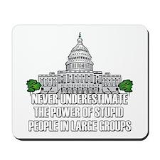 Stupid People In Washington DC Mousepad