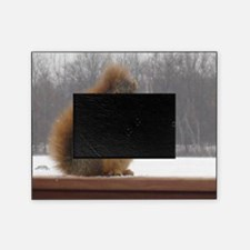 I'm NUTS about you! Picture Frame
