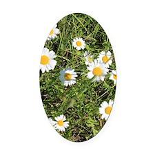 Hey I Heard You Were a Wild Flower Oval Car Magnet