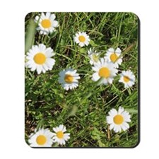Hey I Heard You Were a Wild Flower Mousepad