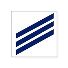 "Navy-SN-Whites.gif Square Sticker 3"" x 3"""