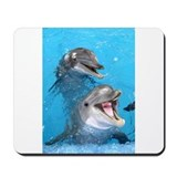 Dolphins Classic Mousepad
