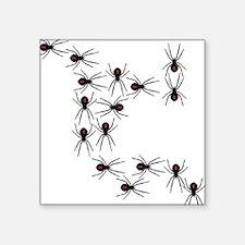 Creepy Crawly Spiders Sticker
