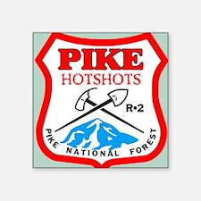 """Pike-Hotshots-Sticker-3 Square Sticker 3"""" x 3"""""""