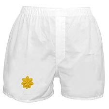 Army-506th-PIR-Major-HQ Boxer Shorts