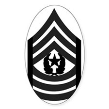 2-Army-CSM-Subdued-Pin Decal