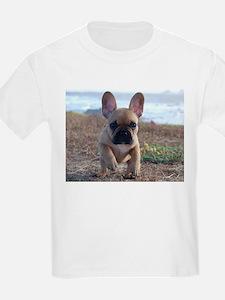 Ava Rouge Kids T-Shirt