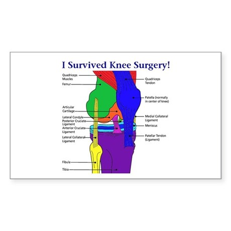 I Survived Knee Surgery! Rectangle Sticker