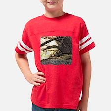 Desert Bobcat Youth Football Shirt