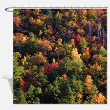 A Slice of Fall Shower Curtain